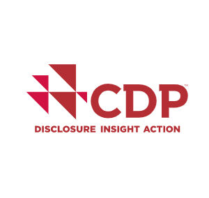CDP Disclosure Insight Action